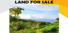 Nusa Penida, ,Land for sale,Land For Sale,1261